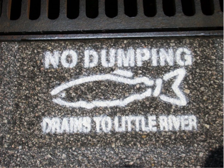 no dumping fish.png